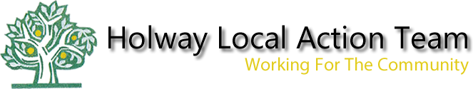 Holway Local Action Team